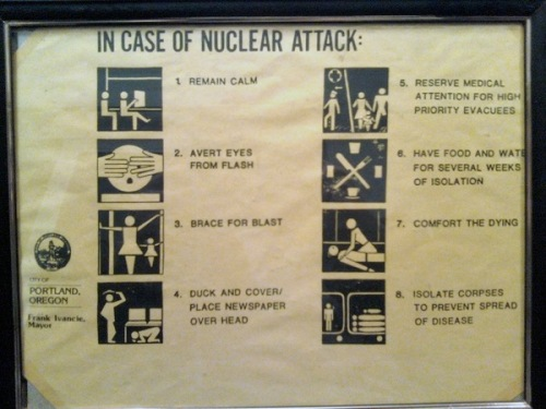 Rsz_in-case-of-nuclear-attack
