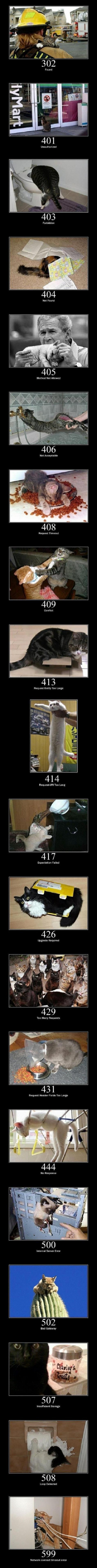 Cat Errors